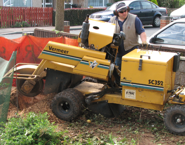 this is an image of stump grinding in mission viejo